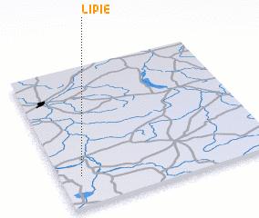 3d view of Lipie