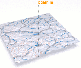 3d view of Radinja
