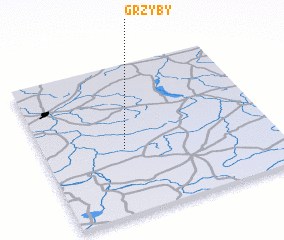 3d view of Grzyby
