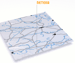 3d view of Neteka
