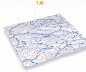 3d view of Turi°
