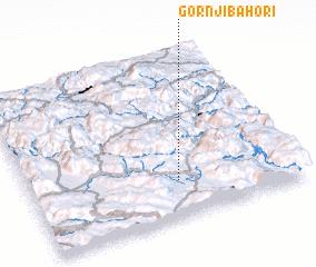 3d view of Gornji Bahori