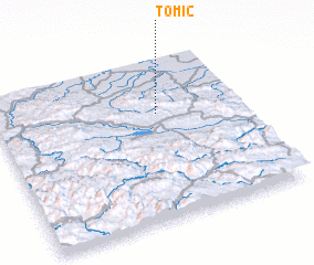 3d view of Tomić