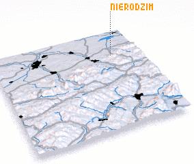 3d view of Nierodzim