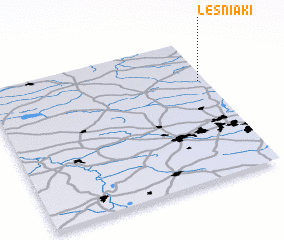 3d view of Leśniaki