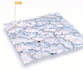 3d view of Dub