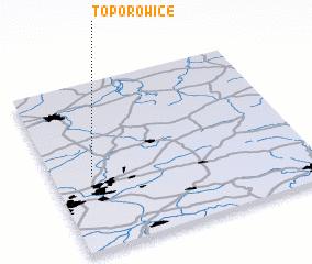 3d view of Toporowice