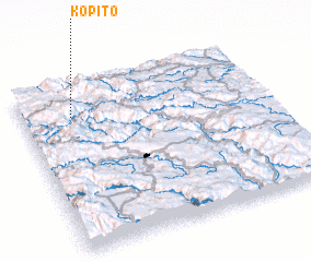 3d view of Kopito