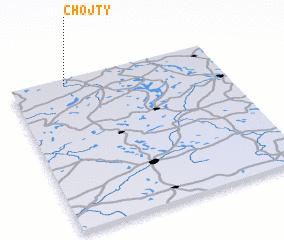 3d view of Chojty