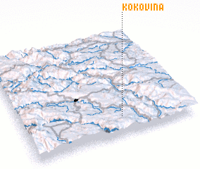 3d view of Kokovina