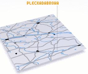 3d view of Plecka Dąbrowa