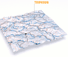 3d view of Tripkova