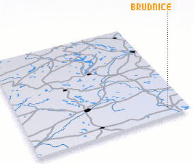 3d view of Brudnice