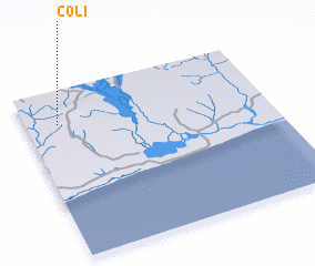 3d view of Coli