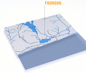 3d view of Toungué