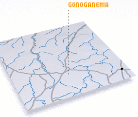 3d view of Gonoganémia