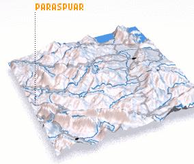 3d view of Paraspuar