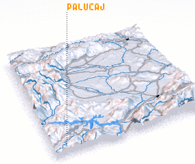 3d view of Palucaj