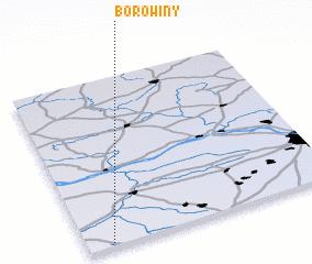 3d view of Borowiny