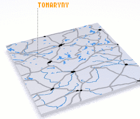 3d view of Tomaryny