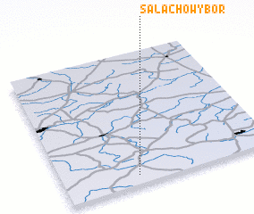 3d view of Salachowy Bór