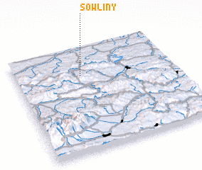 3d view of Sowliny
