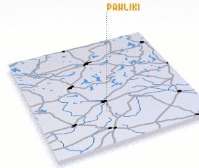 3d view of Pawliki