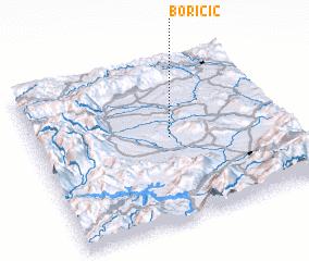 3d view of Boričić