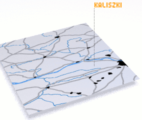 3d view of Kaliszki