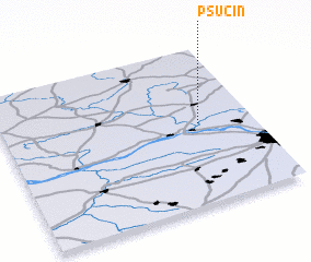 3d view of Psucin