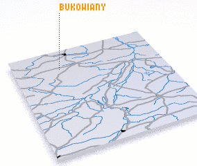 3d view of Bukowiany