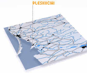 3d view of Pleškučiai