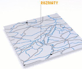 3d view of Rożniaty