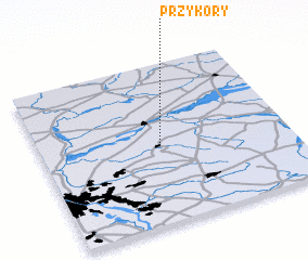 3d view of Przykory