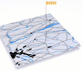 3d view of Borki