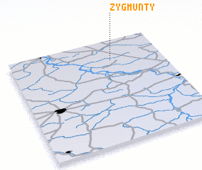 3d view of Zygmunty