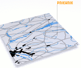 3d view of Pniewnik