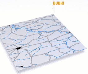 3d view of Dudki