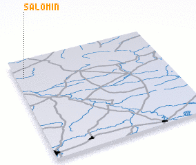 3d view of Salomin