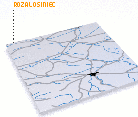 3d view of Róża Łosiniec