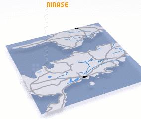 3d view of Ninase