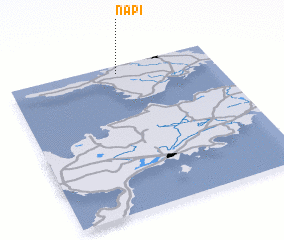 3d view of Napi