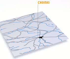 3d view of Choinki