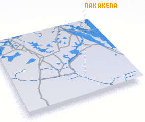 3d view of Nakakena