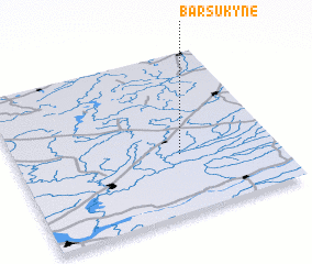 3d view of Barsukynė