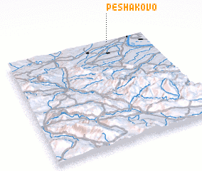 3d view of Peshakovo