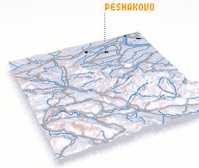 3d view of Peshakovo