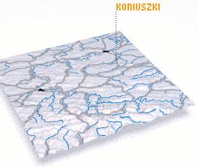 3d view of Koniuszki