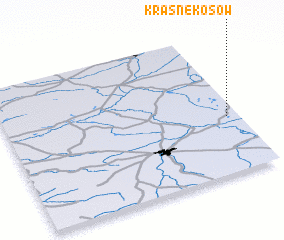 3d view of Krasne Kosów