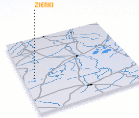 3d view of Zienki